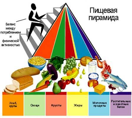 масса порций школьное питание